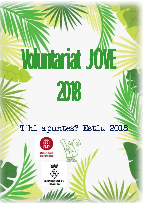 Voluntariat Jove 2018