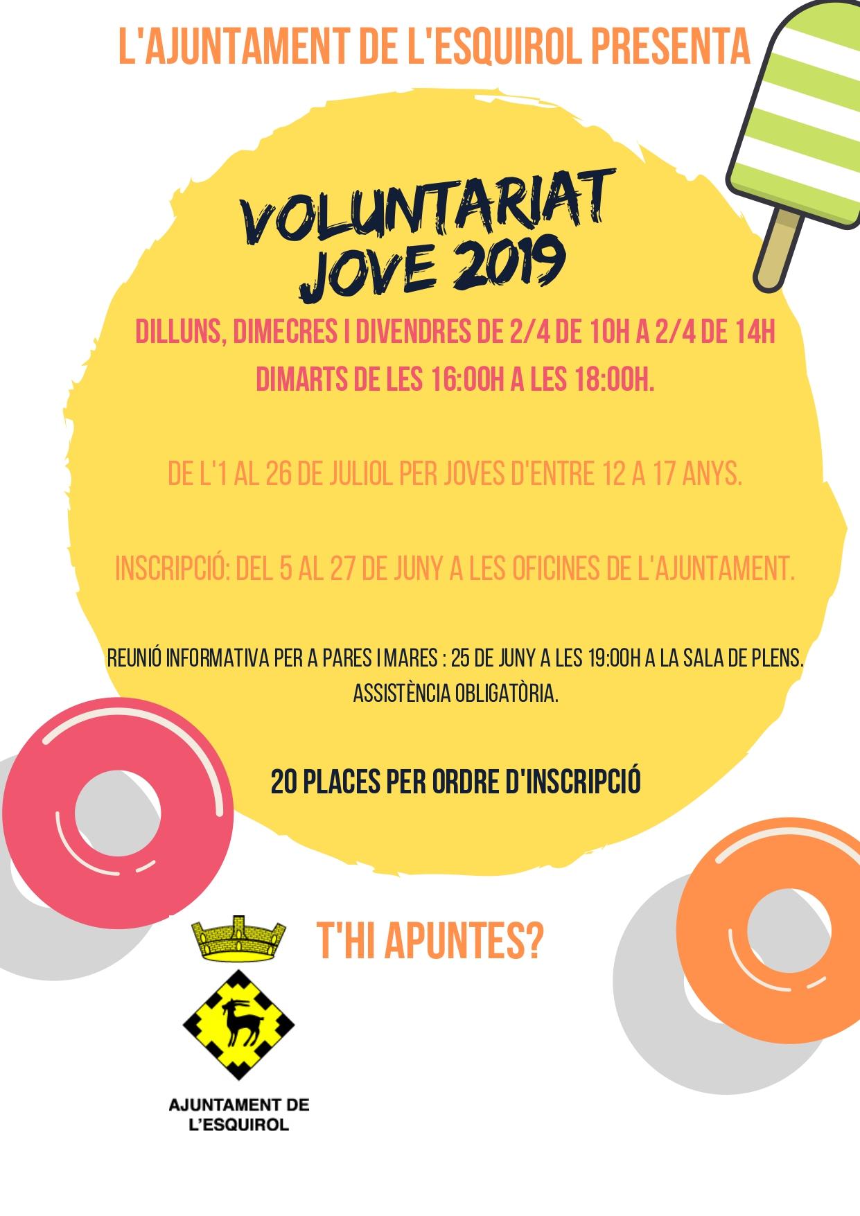 Voluntariat 2019