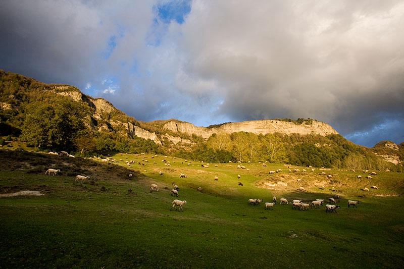 Resultado de imagen de cantonigros poble